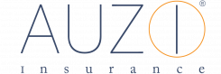 www.auzi.com